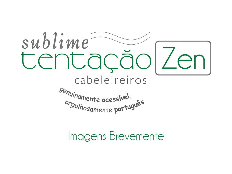 Zen_site-2.png